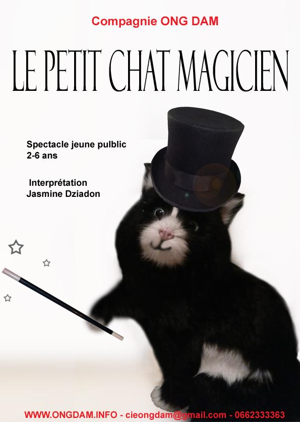 le petit chat magicien